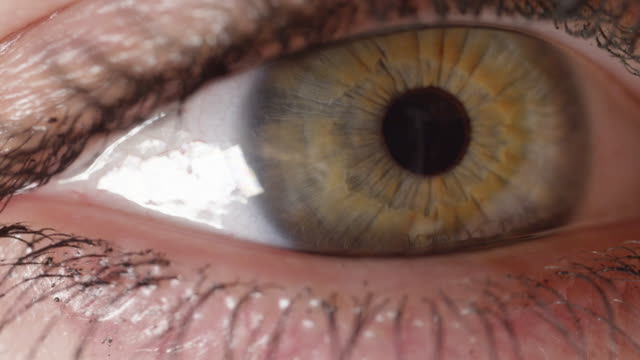 SLOW MOTION MACRO: Green eye with brown streaks curiously looking left and right video