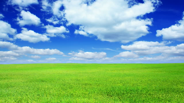 green field and blue sky-hd - grass stock videos & royalty-free footage