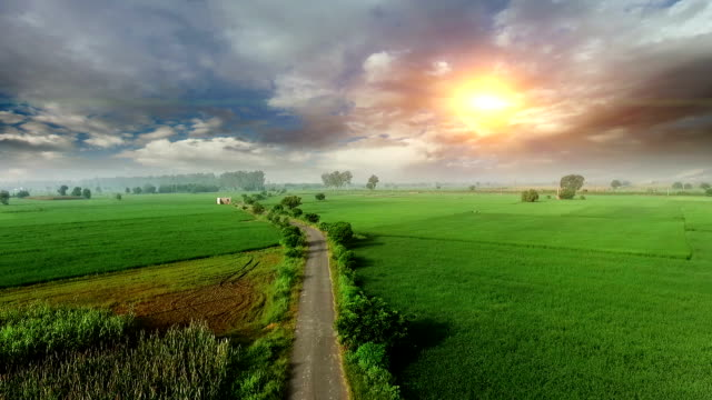 Green field elevated view Green field elevated view at the time of spring under the beautiful cloudscape during sunset also the shot is taken using drone camera. pasture stock videos & royalty-free footage