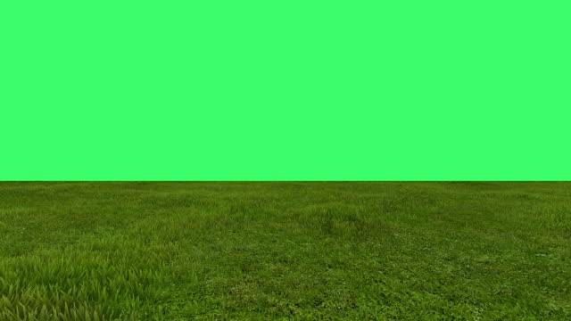 green field on green screen in background video