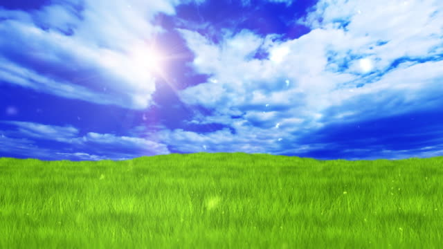 Green field over blue clear sky video