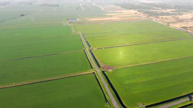 オランダの放牧用緑地と運河 - キューケンホフ公園点の映像素材/bロール