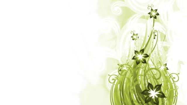 green floral background animation - loop - saffron on white bildbanksvideor och videomaterial från bakom kulisserna