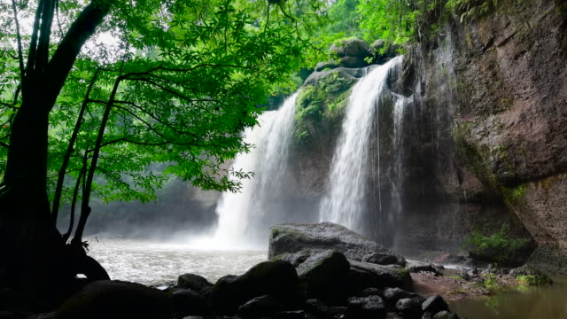 Green Forest Waterfall video