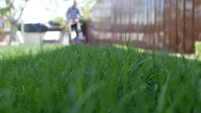 green grass in the foreground and man with lawn mower approaching in the background. low angle shot. - gardino video stock e b–roll