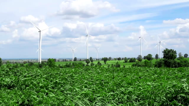 HD : green grass with Wind turbines generating electricity video