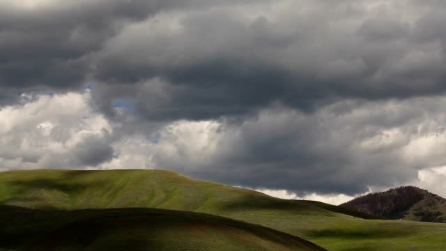 Green Hills of Yellowstone. video