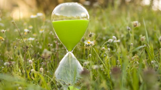 TIMELAPSE: Green hourglass in nature