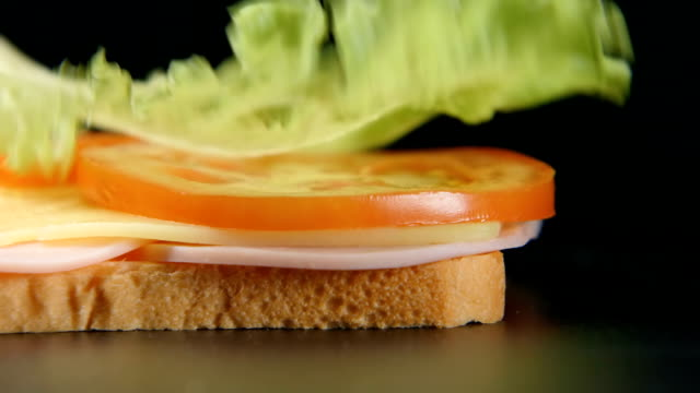 slowmotion: grönt löv faller på en smörgås - cheese sandwich bildbanksvideor och videomaterial från bakom kulisserna