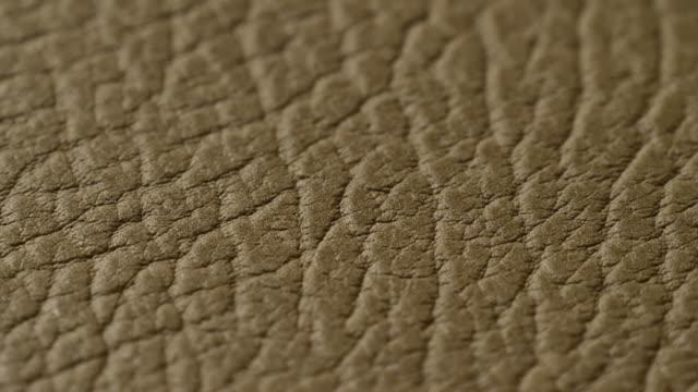 stockvideo's en b-roll-footage met groene lederen textuur oppervlak echte achtergrond macro close-up. - dierenhuid huid