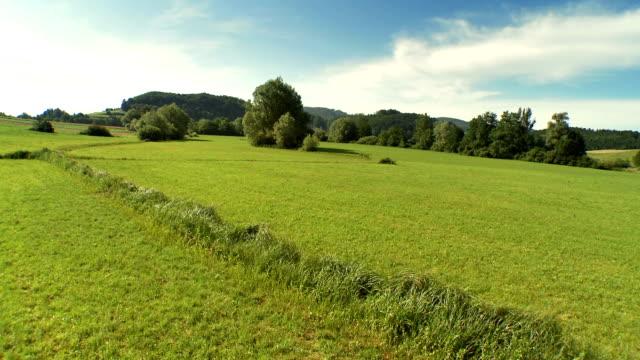 AERIAL Green Meadow video