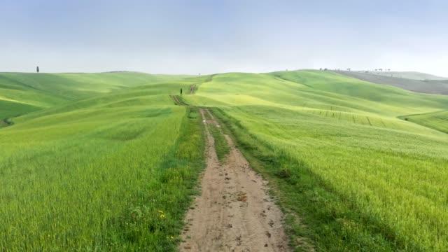 toskana, italya 'nın yeşil çayırları. yeşil çayırlar arasında bir iz boyunca hava atışı. 4k, uhd - toskana stok videoları ve detay görüntü çekimi