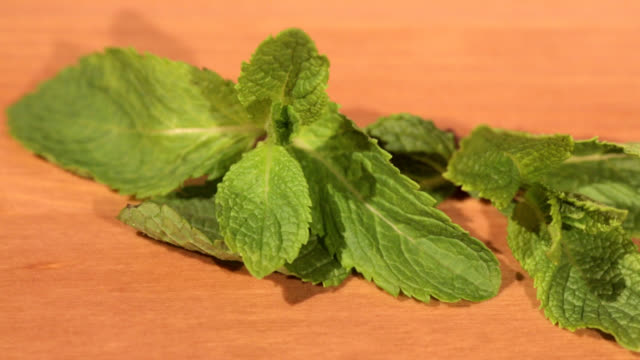 Green mint plant on a wooden table Sliding view of a fresh mint plant on a wooden table background lip balm stock videos & royalty-free footage