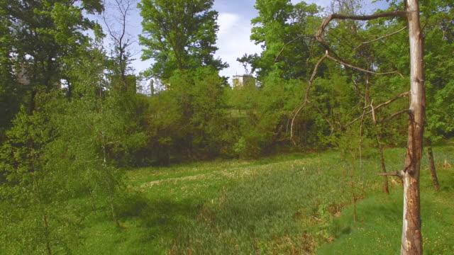 Green park in Sofia, Bulgaria video