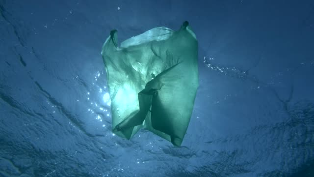 Green plastic bag drifting under surface of the blue water in the sunrays. Plastic pollution of the ocean. Underwater shot, Low-angle shot, Contre-jour (backlighting). 4K/50fps Green plastic bag drifting under surface of the blue water in the sunrays. Plastic pollution of the ocean. Underwater shot, Low-angle shot, Contre-jour (backlighting). 4K/50fps sac stock videos & royalty-free footage