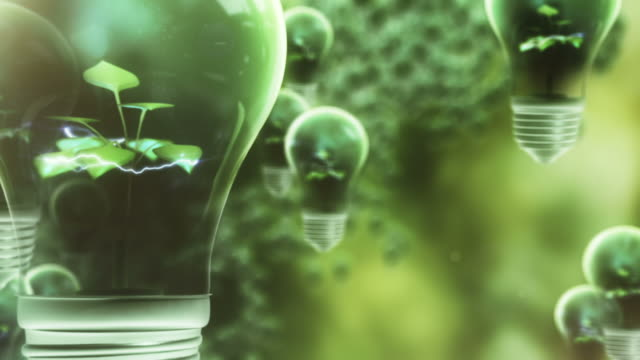 Green Power Illuminates the World video