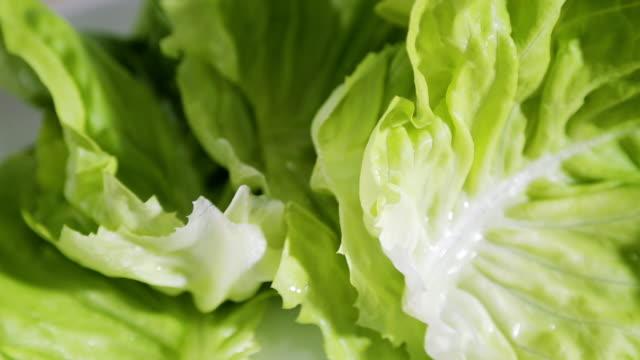 vídeos de stock e filmes b-roll de green salad close-up - saladeira