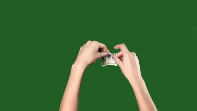Green screen. Chromakey. Woman hands breaks the hundred dollar bill.