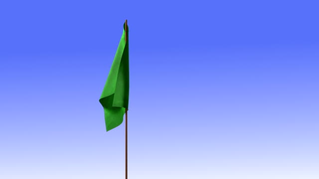 green signal flag video