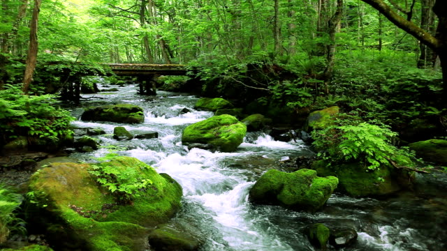 Green stream.