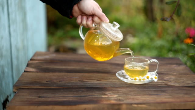 green tea with chamomile in cup video
