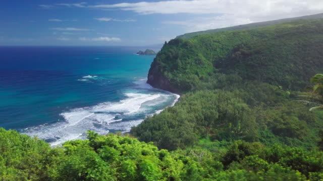 Green tropical coast of the Pacific ocean Green tropical coast of the Pacific ocean with palm trees and steep cliffs. Big Island, Hawaii big island hawaii islands stock videos & royalty-free footage
