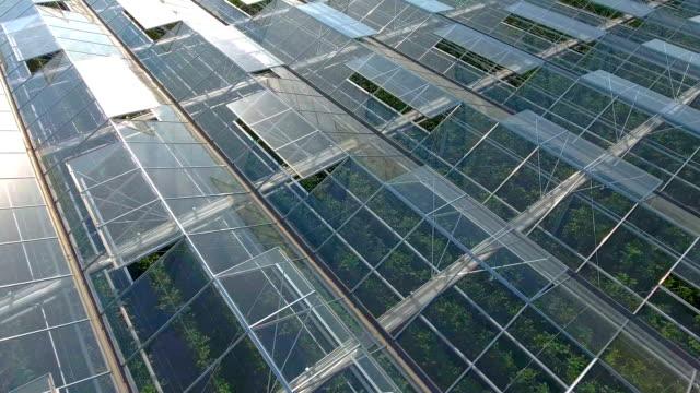 Greenhouse complex video