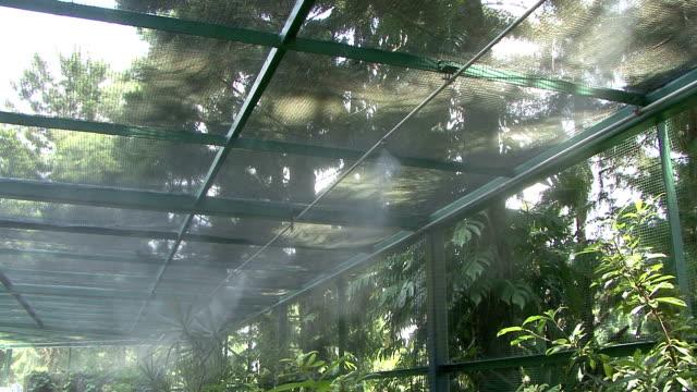 Greenhouse Irrigation video