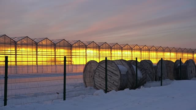 greenhouses glow on the sunset background