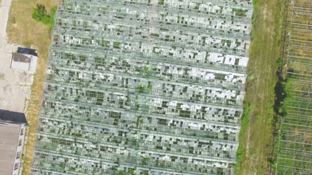 AERIAL: Greenhouses on agricultural farms Agricultural greenhouses with open windows for ventilation, aerial video, drone point of view hydroponics stock videos & royalty-free footage