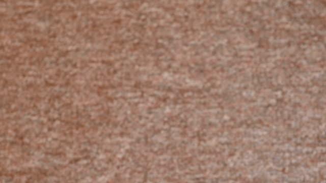 Grey shorthair carpet texture. Blur. Grey shorthair carpet texture abstract shorthair cat stock videos & royalty-free footage