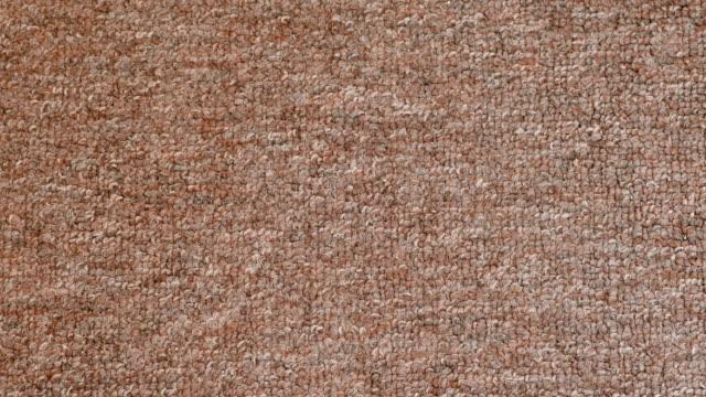 Grey shorthair carpet texture. Grey shorthair carpet texture abstract shorthair cat stock videos & royalty-free footage