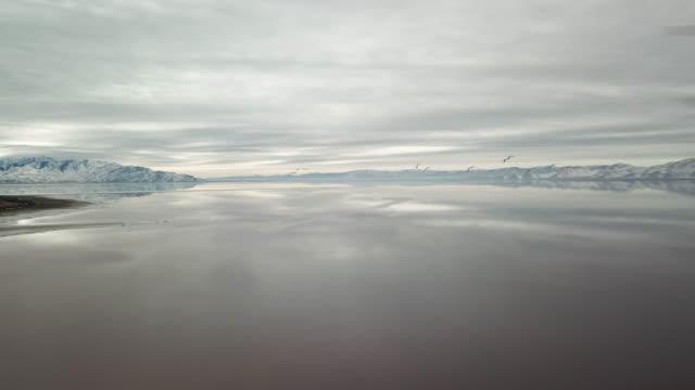 vidéos et rushes de ciel gris et l'eau plate - lac salé