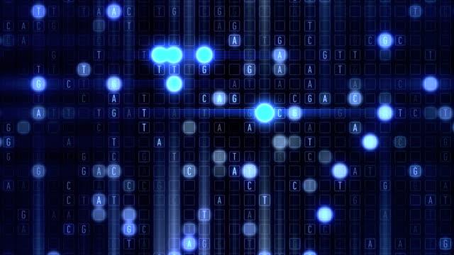 vídeos y material grabado en eventos de stock de rejilla acgt de adn - cromosoma