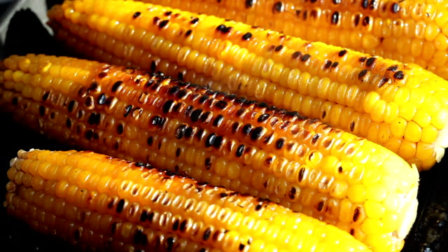 grilled corn - grilling stock videos & royalty-free footage