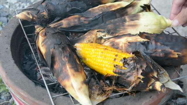 grilled corn grilled corn seared stock videos & royalty-free footage