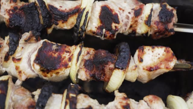 grilled kebab on fire - alliacee video stock e b–roll