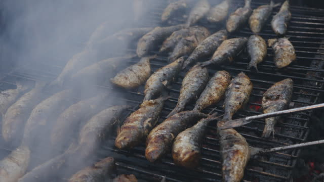 grilled sardines on the fire - portogallo video stock e b–roll