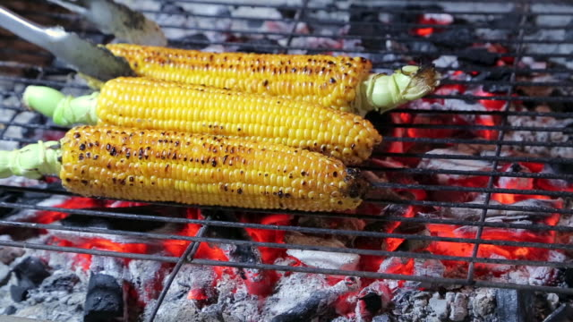 Grilled sweet corn ready to be eaten Grilling the corn on a iron barbecue grill at food market, summer grilling roasted stock videos & royalty-free footage