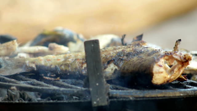 Grilling Fish video