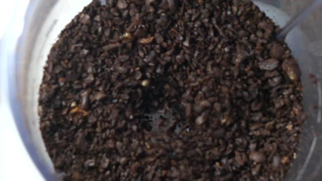 schleifen kaffee zeitlupe - grind stock-videos und b-roll-filmmaterial