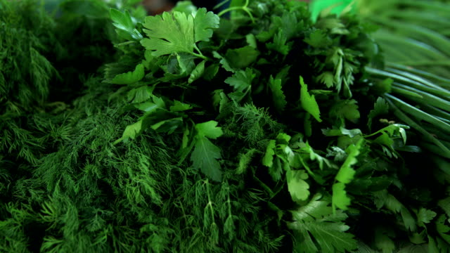 Grocery market. Bunches of greens at stall Grocery market. Bunches of greens at stall. Sorrel, dill, parsley parsley stock videos & royalty-free footage