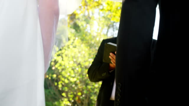 Groom and bride holding there hands 4K 4k video