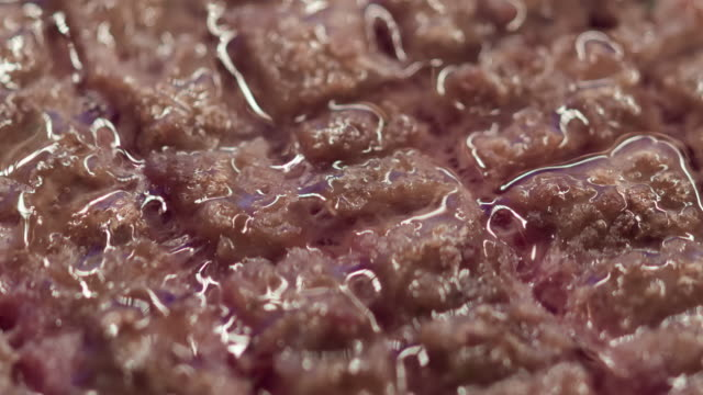 Ground Beef Cutlet Cooking Extreme Close-up Time Lapse video