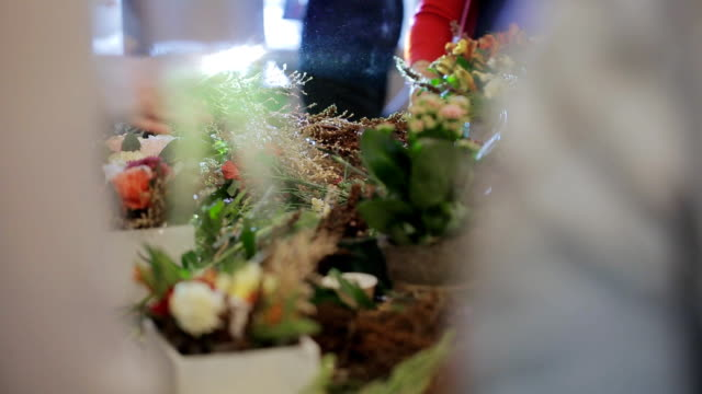 Group master florists, working with flowers, bouquets, boutonnieres, herbs, plants video