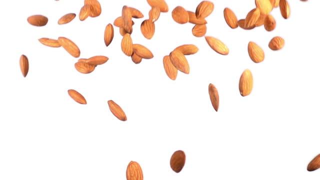 vídeos de stock e filmes b-roll de group of almonds flying in slow motion - amendoas