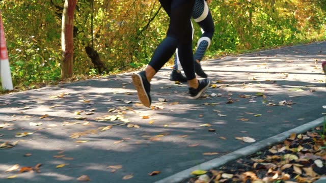 Group of athletes jogging in park in the morning video