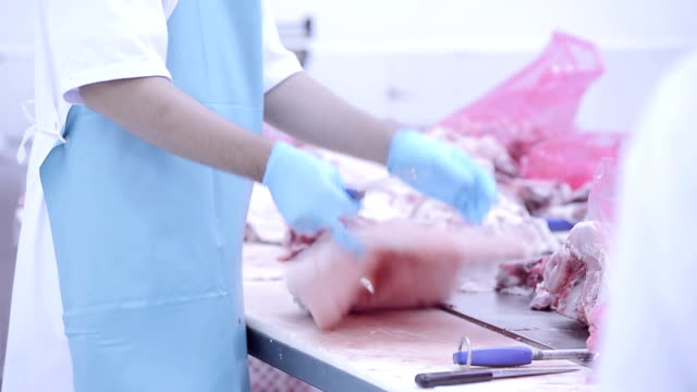 Group of butchers working in fresh meat processing factory video