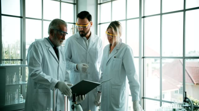 4K : Group of chemists working in laboratory video