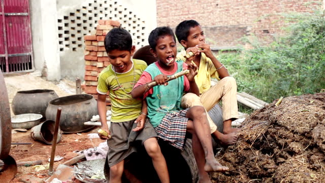 Grupo de niños disfrutando de caña de azúcar - vídeo